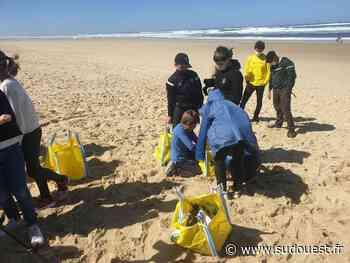 Mimizan : Un chantier citoyen pour nettoyer la plage - Sud Ouest