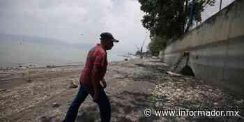 Culpa CEA a Jocotepec por descarga de aguas negras en el lago de Chapala - EL INFORMADOR