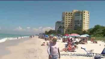 Emiten alerta de salud por marea roja en costa oeste de Florida - Telemundo 51 - Miami