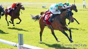 Galopprennen in Hoppegarten: Rip Van Lips gewinnt mit Jockey Gerald Mosse - rbb24