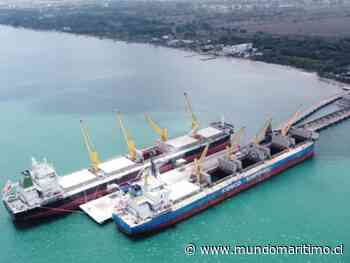 Colombia: Compas Tolú rompe récord con embarque de 56 mil toneladas de carbón térmico destinado a Brasil - MundoMaritimo.cl