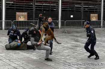 Villejuif : le maire PCF supprime le LBD, le Taser et la brigade canine à la police municipale - Le Parisien