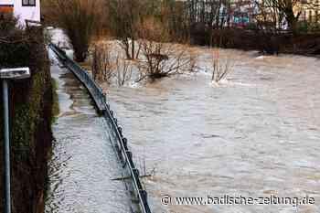 Mehr Schutz vor Elz-Hochwasser in Waldkirch ist machbar - Waldkirch - Badische Zeitung