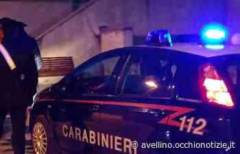 Droga dalla Spagna nascosta nel mangime per animali: arrestata coppia di Solofra - L'Occhio di Avellino