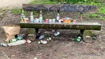 Harrislee: Ärger über Müllberge am Puschenweg | shz.de - shz.de