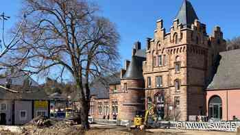 230 Jahre alter Baum in Gerolstein wird nicht gefällt - SWR