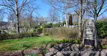 Was es mit den Maulbeerbäumen in Saarwellingen auf sich hat - Saarbrücker Zeitung