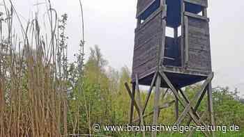 Randale in Wolfsburg: Unbekannte demolieren Hochsitz am Fallersleber Aueteich