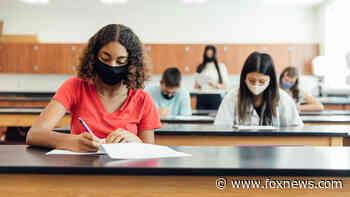 Coronavirus testing strategies, opinions vary widely in US schools - Fox News