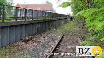 Bahnstrecke Fredenberg : Politiker uneins über Gleis-Reaktivierung in Lebenstedt