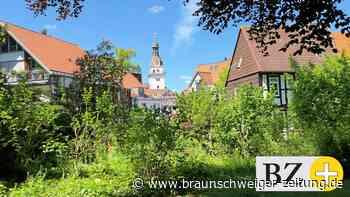 Urlaub 2021 in Niedersachsen: Urlaub 2021: Das gilt in Wolfenbüttel und Niedersachsen