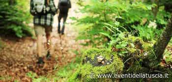 4 MAGGIO 2021   RONCIGLIONE - Nuovi sentieri con il Cai per valorizzare le bellezze storiche e naturali - - Eventi della Tuscia