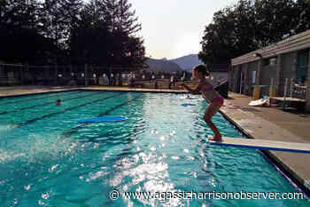 Fernie Coomb swim time bookings available – Agassiz Harrison Observer - Agassiz Harrison Observer