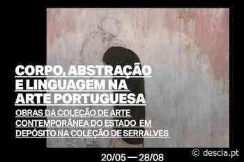 Serralves expõe no Centro Municipal de Cultura, em Ponta Delgada - Revista Descla