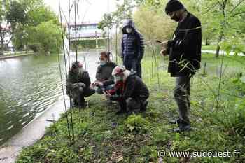 Gironde : à Talence, une invitation à dresser l'inventaire des espèces naturelles - Sud Ouest