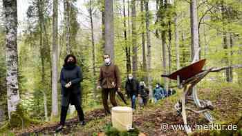 Sehnsuchtsort Wald im Naturfriedhof Mittenwald - Merkur Online