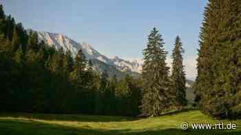 Erster staatlicher Naturfriedhof öffnet in Mittenwald - RTL Online