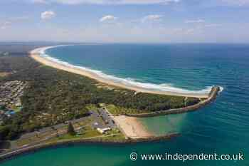 Suspected great white shark attack leaves surfer dead in Australia