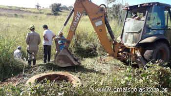 Bombeiros tiram vaca de uma cisterna em Carmo do Rio Verde - Mais Goiás