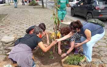 Lagoa terá cinturão verde de árvores frutíferas - Jornal O Dia