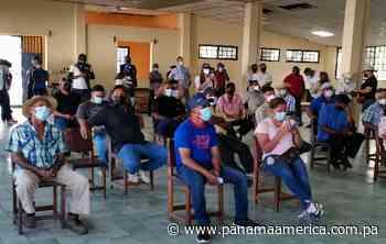 Productores de cebolla de Natá buscan un acercamiento con las autoridades agropecuarias - Panamá América