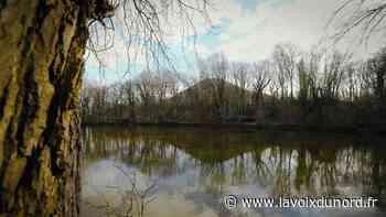 Oignies : le corps d'un homme retrouvé dans l'étang du bois des Hautois - La Voix du Nord