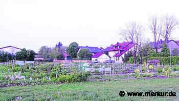 Oberding will Seniorenarbeit ausbauen - Merkur.de