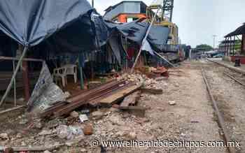 Un cochinero estación del ferrocarril en Huixtla, denuncian - El Heraldo de Chiapas