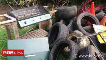 Ancaster Valley: Rubbish dumped and trees cut at reserve - BBC News