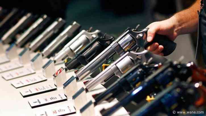 Gun sales on pace for record year