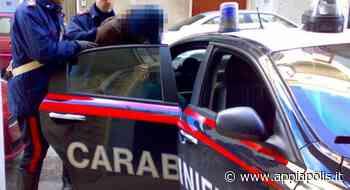 CAUSÒ INCIDENTE MORTALE A PIGNATARO MAGGIORE, CATTURATO ALBANESE A VIPITENO - Appia Polis