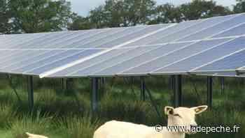Bouloc. Centrale photovoltaïque : les porteurs défendent leur projet - ladepeche.fr