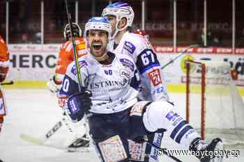 Nick Huard's hockey isolation in Germany - BayToday.ca