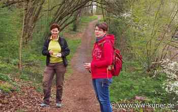Der Dreikirchenweg Westerburg lädt zum Erkunden ein - frisch ausgeschilderter Fußweg - WW-Kurier - Internetzeitung für den Westerwaldkreis