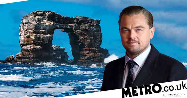 Leonardo DiCaprio teams up with conservation groups to pledge $43million to restore Galapagos Islands