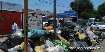 La basura invade Salina Cruz - El Imparcial de Oaxaca