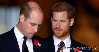 Prince William 'saddened' by Harry's attack on Charles and reunion 'at risk'