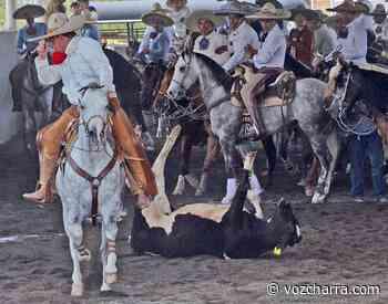 Rancho Santa Sofía se corona en la Copa Guanajuato en Santa Ana del Conde - La Voz de la Charrería