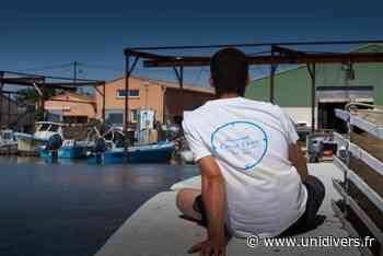Dégustation au bord de l'eau Coqui Thau Marseillan - Unidivers