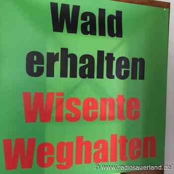 Diskussion um Wisent-Gatter in Schmallenberg geht weiter - Radio Sauerland
