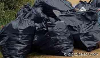 Éxito total en la recogida de basura de las Lomas de ayer - Digital de León