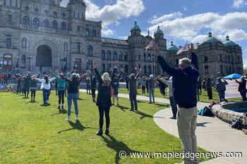 Arrests begin at Fairy Creek blockade on Vancouver Island – Maple Ridge News - Maple Ridge News