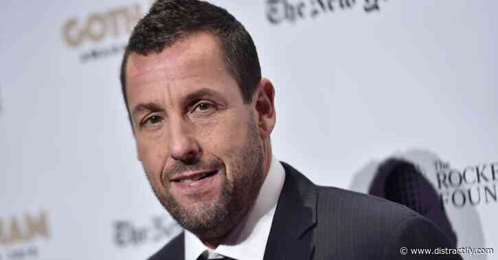 Why Did Adam Sandler Leave 'Hotel Transylvania'? Inside His Departure - Distractify