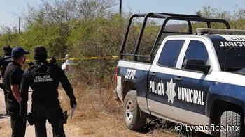 Asesinan a un hombre en la Laguna Colorada | Seguridad | Noticias | TVP - TV Pacífico (TVP)