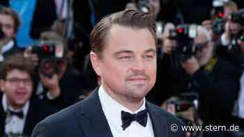 Leonardo DiCaprio: 43 Millionen Dollar für den Umweltschutz - STERN.de