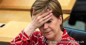 Scotland found devolved govs had no power to do Universal Basic Income - Wales Online