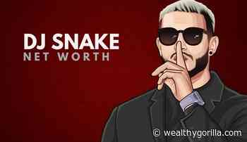 DJ Snake's Net Worth (Updated May 2021) - Wealthy Gorilla