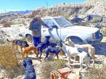 Los 24 perros de Hugo, el mecánico de Montecristo - Tarija - El País