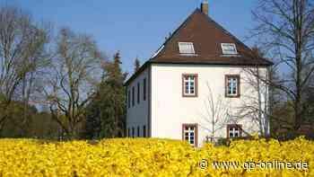 Schlossmühle als Zwischenlösung - op-online.de