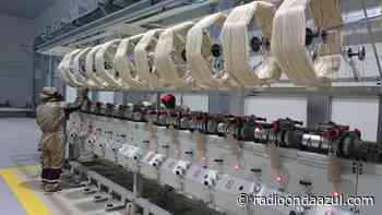 San Antonio de Putina: Anuncian instalar planta procesadora de fibra de vicuña - Radio Onda Azul